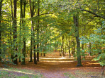 Ludwig-Lesser-Park