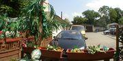 04 - Der Sommergarten
