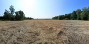 Heiligenseer Felder