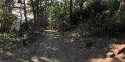 02 - Wander- und Gehwege im Park