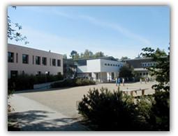 Renée-Sintenis Schule